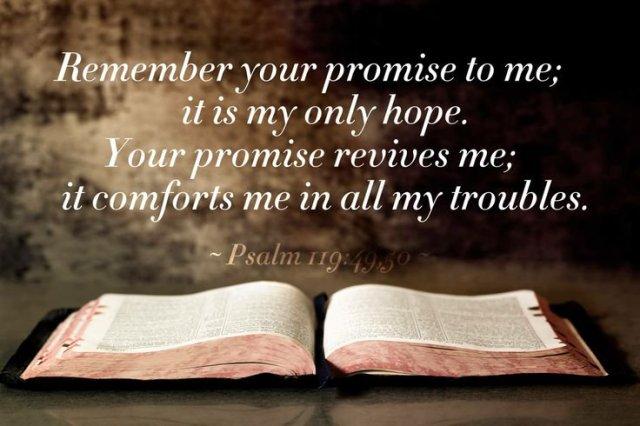 psalm-119-bible