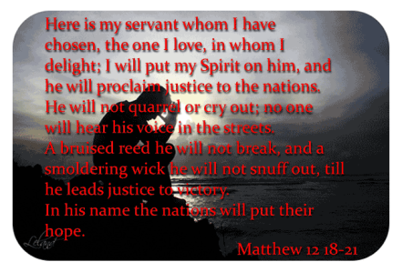 matthew.12.18-21