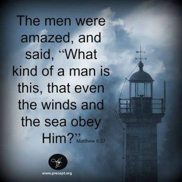 Matthew 8 who