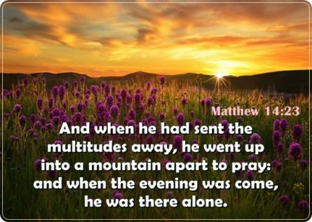 Matthew 14 by himself to pray