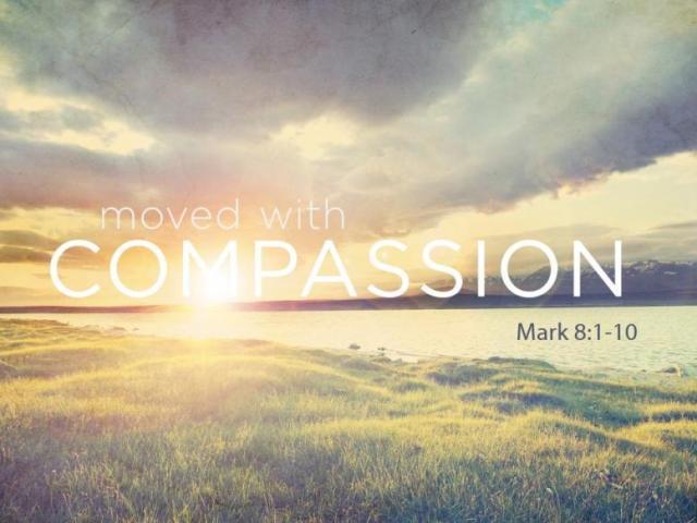 Mark 8 compassion