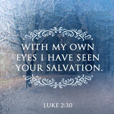 Luke 2 salvation seen