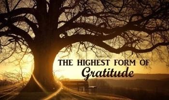 LUke 7 gratitude