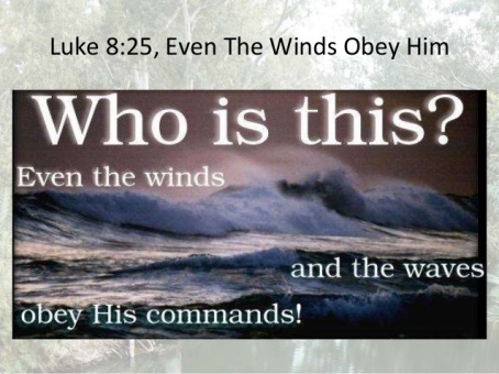 Luke 8 waves