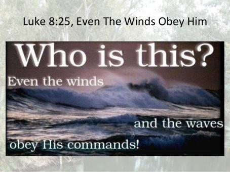 Luke 8 waves
