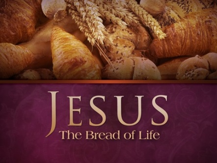 John 6 Jesus Bread of Life