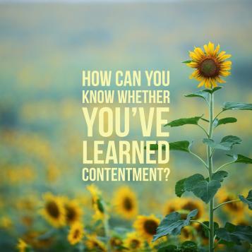Philippians 4 contentment