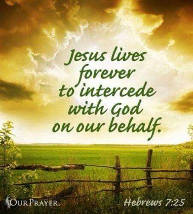 Hebrews 7 our priest