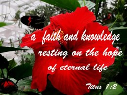 Titus 1 hope and knowledge