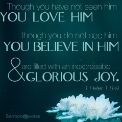 1 Peter 1 joy