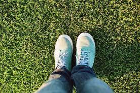 2 Peter 1 grass