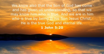1 John 5 20 God is real