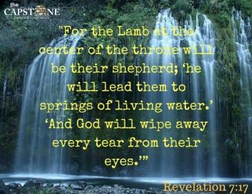 Revelation 7 Jesus