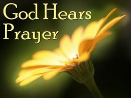Psalm 6 God hears