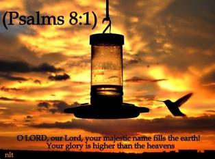 Psalm 8 glory of God