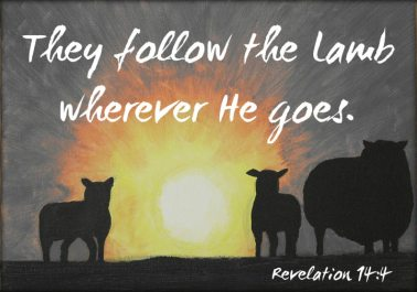 Revelation 14 follow