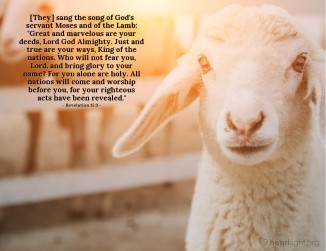 Revelation 15 the lamb