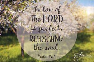 Psalm 19 7