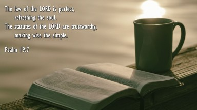 Psalm 19 wise