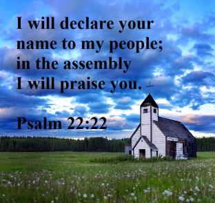 Psalm 22 praise.jpg