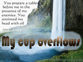 Psalm 23 cup overflows.jpg