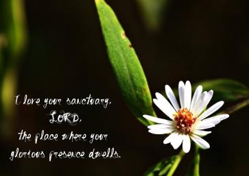 Psalm 26 house of God