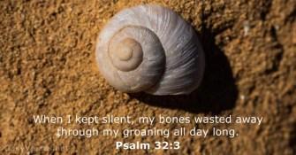 Psalm 32 bones