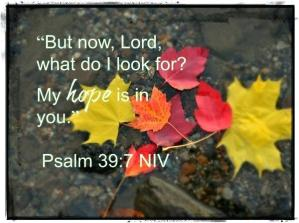 Psalm 39 hope in You