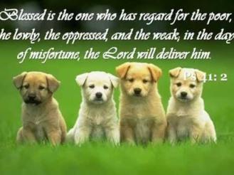 Psalm 41 2