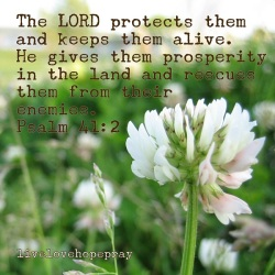 Psalm 41 God keeps them