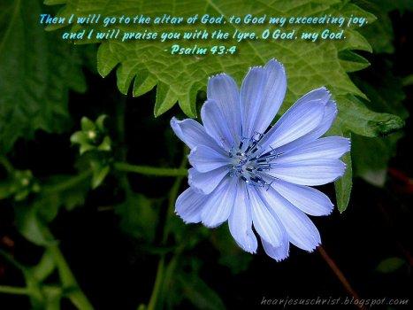 Psalm 43 lyre