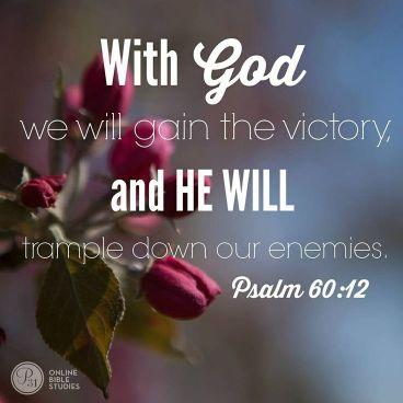 Psalm 60 12