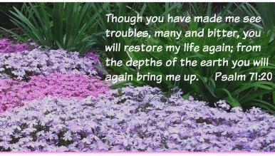 Psalm 71 20