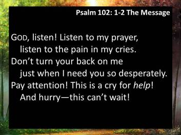 Psalm 102 2 message