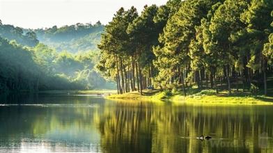 Psalm 104 lakes