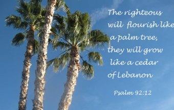 Psalm 92 12