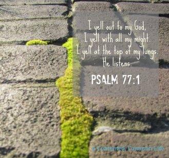 Psalm 77 I yell