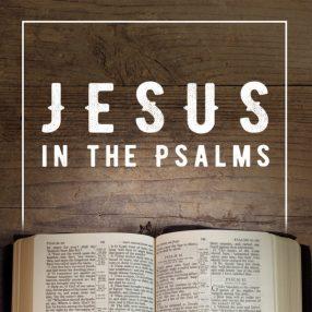 Psalm 109 Jesus in Psalms.jpg