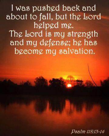 psalm 118 13