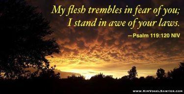psalm 119 120 niv