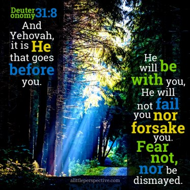 psalm 119 121 god is with us