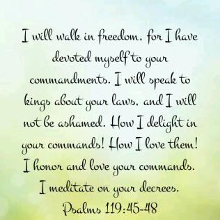 psalm 119 48
