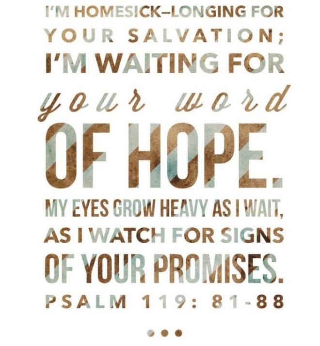 psalm 119 81