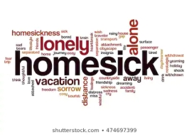 psalm 119 homesick
