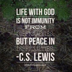 psalm 119 peace