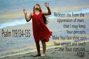 psalm119134135