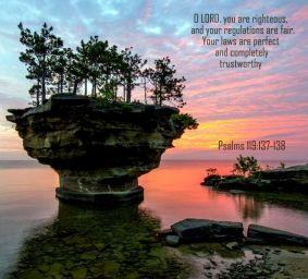 Psalm 119 138