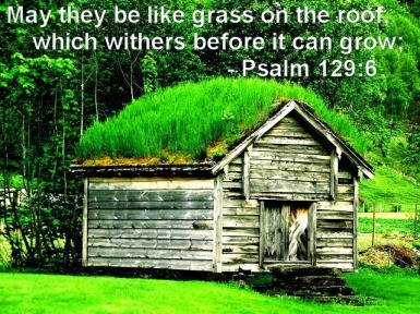 Psalm 129 grass on roof