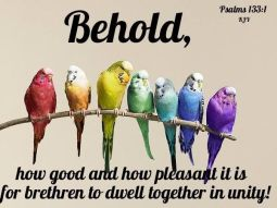 Psalm 133 birds