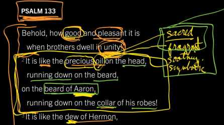 Psalm 133 lab